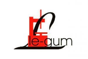 Geometria Matrix – nowość Le-Gum na rok 2013