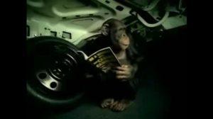 Alarm samochodowy nowej generacji [Film]