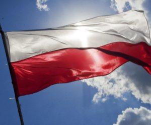 """Czy """"polski gen"""" w motoryzacji pozostanie polskim?"""