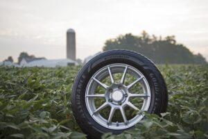 Goodyear wzmacnia zaangażowanie w pozyskiwanie soi