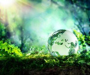 """""""ECO VISION"""" – NGK Spark Plug promuje działania na rzecz ochrony środowiska"""